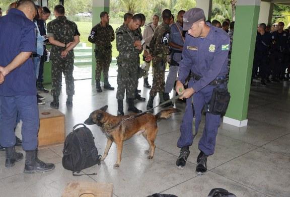 GUARDA MUNICIPAL REALIZA TREINAMENTO DE OPERAÇÕES COM CÃES